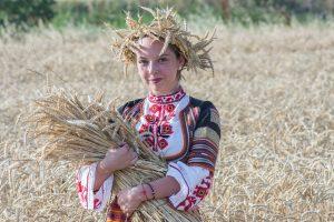 Bułgaria żniwa