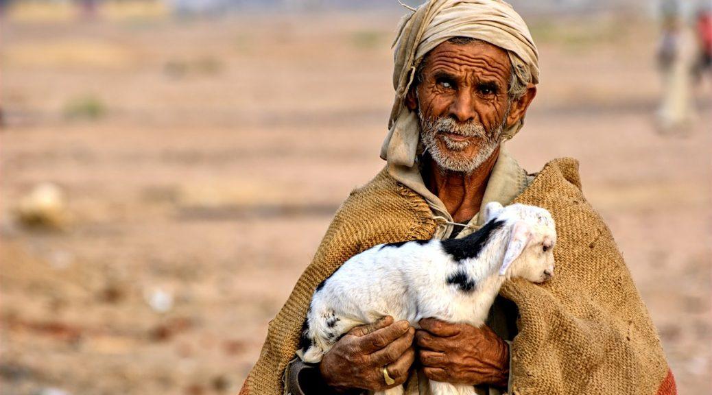 człowiek z owieczką pustynia